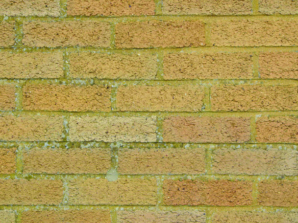 ... home has cavity walls; if they show an alternating  long-short-long-short pattern (like in this photo) then your home has solid  walls.